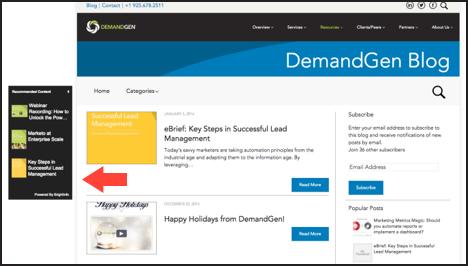 DemandGen maximizes content exposure with brightinfo